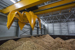 Storage of wood chips Stock Photography