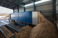 Storage of wood chips Stock Image