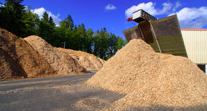 Storage of wooden fuel against blue sky Stock Image