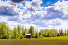 Storages On The Fields. A couple of storages by the spring fields in the rural Finland. It's almost summer Royalty Free Stock Images