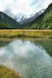 Storartad natur av Nya Zeeland Fotografering för Bildbyråer