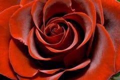 storartad red steg Royaltyfria Foton