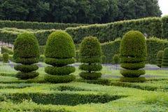 Storartade dekorativa trädgårdar arkivfoton
