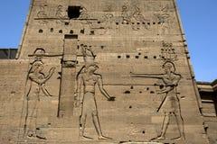 Storartade lättnader och hieroglyps på den andra pylonen på templet av Isis på Philae (den Agilqiyya ön) i Egypten Fotografering för Bildbyråer