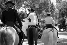 Storartade riddare och amazons, på arabiska hästar arkivfoton