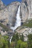 Storartade yosemite fallls, nat yosemite parkerar, Kalifornien, USA arkivfoton