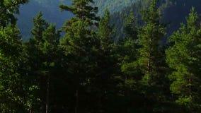 Storartat berglandskap och turbulent flöde under stock video