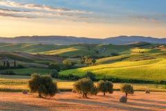 Storartat vårlandskap på soluppgång Härlig sikt av det typiska tuscan lantgårdhuset Royaltyfria Foton