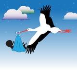 Storch, der das Schätzchen holt Stockfoto