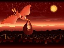 Storch, der Schätzchen am Sonnenaufgang liefert Stockfoto