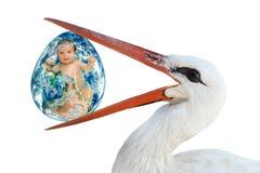 Storch, der in seinem Schnabel ein Ei mit einem Baby hält lizenzfreies stockbild