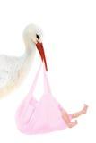 Storch mit Schätzchen im rosafarbenen Beutel Stockbild