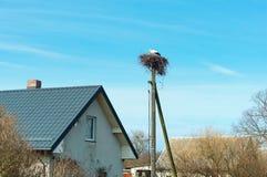 Storchnest auf einer Säule, Storch im Nest nahe dem Haus stockfotografie