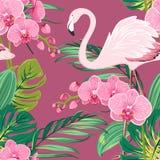 Storczykowego kwiatu flaminga liści tropikalny wzór Fotografia Stock