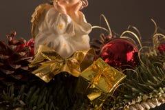 storczykowy czerwony kolor żółty Zdjęcie Royalty Free