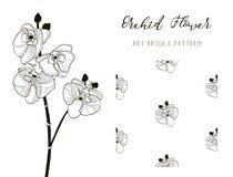 Storczykowy kwiatu projekt Sztuka wzór i muśnięcie wektor Obraz Stock