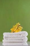 storczykowy ręcznikowy kolor żółty Obraz Royalty Free