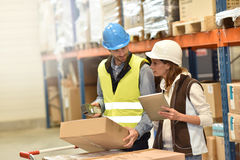 Store manager and warehouseman at work. Store manager with warehouseman checking stock levels Stock Photography