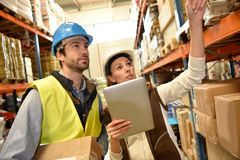 Store manager with warehouseman working. Store manager with warehouseman checking stock levels Royalty Free Stock Image