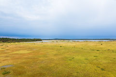 Store Mosse National Park Royalty Free Stock Photography