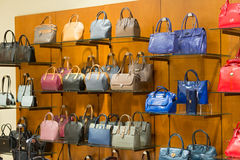 Store suitcases and bags. Glass shelves with goods Stock Photos