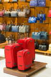 Store suitcases and bags. Glass shelves with goods Stock Image