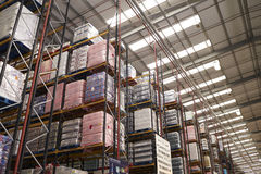 Stored merchandise in a distribution warehouse, low angle Royalty Free Stock Photo