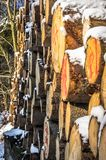 Stored tree trunks in the snow with markings, selective focus. Stored tree trunks in the snow with markings, Harz national park Royalty Free Stock Photo