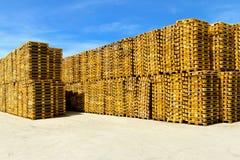 storehouse паллетов Стоковая Фотография RF