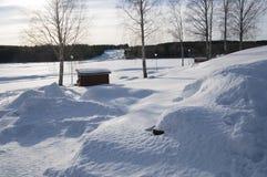 Storforsen在冬天 免版税库存图片