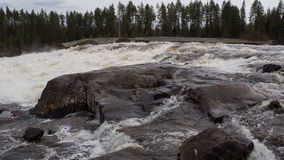 Storforsen, cachoeira Fotos de Stock Royalty Free