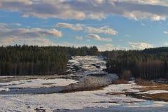 Storforsen dans Norrbotten Photo stock