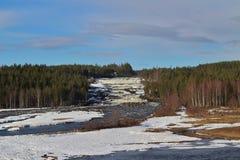 Storforsen in Norrbotten Stockbilder