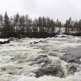 Storforsen in Norrbotten Royalty Free Stock Photo
