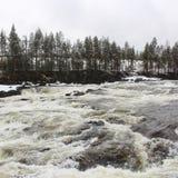 Storforsen in Norrbotten Royalty Free Stock Photo