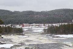 Storforsen in Norrbotten Stock Photography