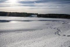 Storforsen w zimie Obraz Royalty Free