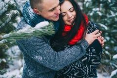 Storia di amore di inverno Immagine Stock