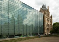 Storia naturale del museo a Londra, Regno Unito Immagini Stock Libere da Diritti