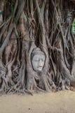 Storico ed antico la testa Buddha Immagini Stock Libere da Diritti