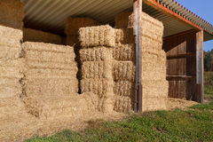 Storing hay balls Stock Images