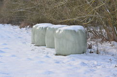 Storing hay in the winter, South Bohemia. Czech Republic Royalty Free Stock Images