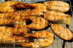 Storione della bistecca Immagine Stock