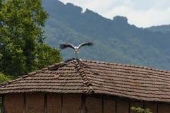 Stork alight  over old roof in summer weather,  Dushantsi village, Central Balkan mountain, Stara Planina. Bulgaria Royalty Free Stock Photos