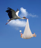 Stork & Baby. Classic depiction of a stork in flight delivering a newborn baby Royalty Free Stock Photography
