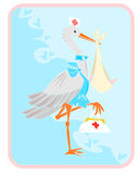 Stork with baby. The image illustrates the classic stork dressed as a nurse, who carries the baby wrapped in a bundle Royalty Free Illustration