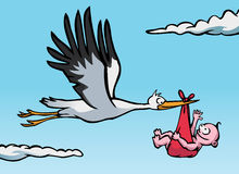 Stork with baby. A flying stork with a baby in a red cloth Stock Photos