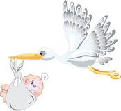 Stork and baby. Baby birth concept Stock Photos