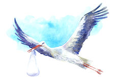 Stork with baby on the background of blue sky. Royalty Free Stock Photography