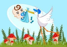 Stork and baby boy. Stork carrying a cute baby boy stock illustration